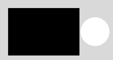 This is an image of a white circle leave in a black rectangle